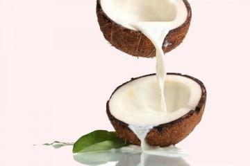 1kg cơm dừa ép được bao nhiêu nước cốt dừa?