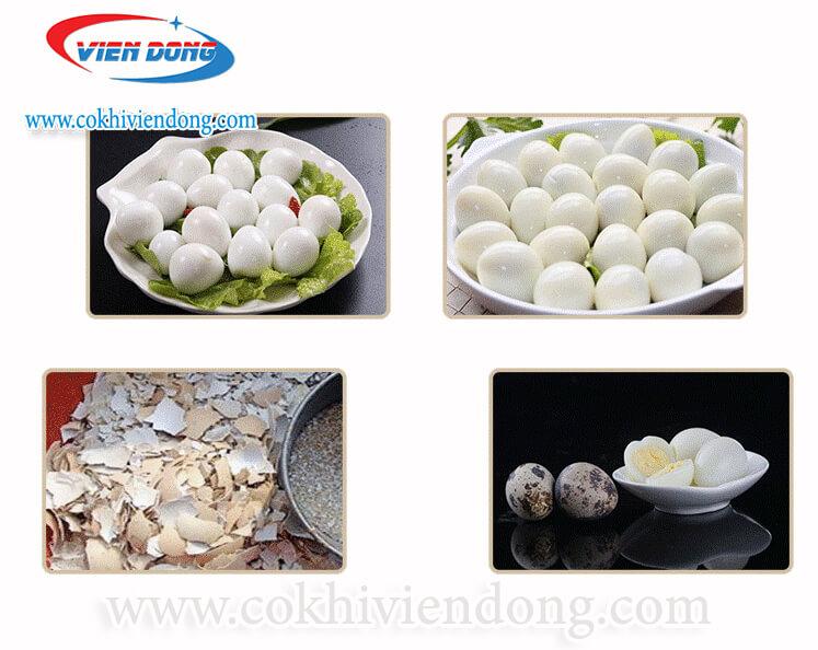 Máy bóc trứng cút